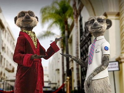 Comparethemeerkat_advert